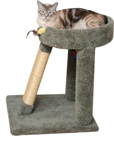 Elevated Cat Bed Color Gray Sturdy Wood Construction Made To Last Large Cat Resting Area On Top Arrives Diy Cat Scratching Post Cat Scratching Post Cat Diy