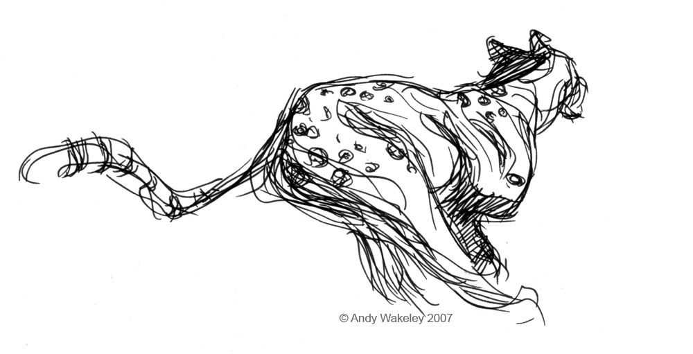 inspiration for sketch a day - day 67 ~ something spotty   artsy ...