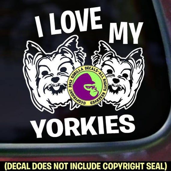 I Love My Yorkies Dog Yorkie Yorkshire Terrier Breed Car Window Sign Vinyl Decal Sticker I LOVE MY YORKIES Dog Yorkie Yorkshire Terrier Breed Car Window Sign Vinyl Decal Sticker White Things white color yorkie