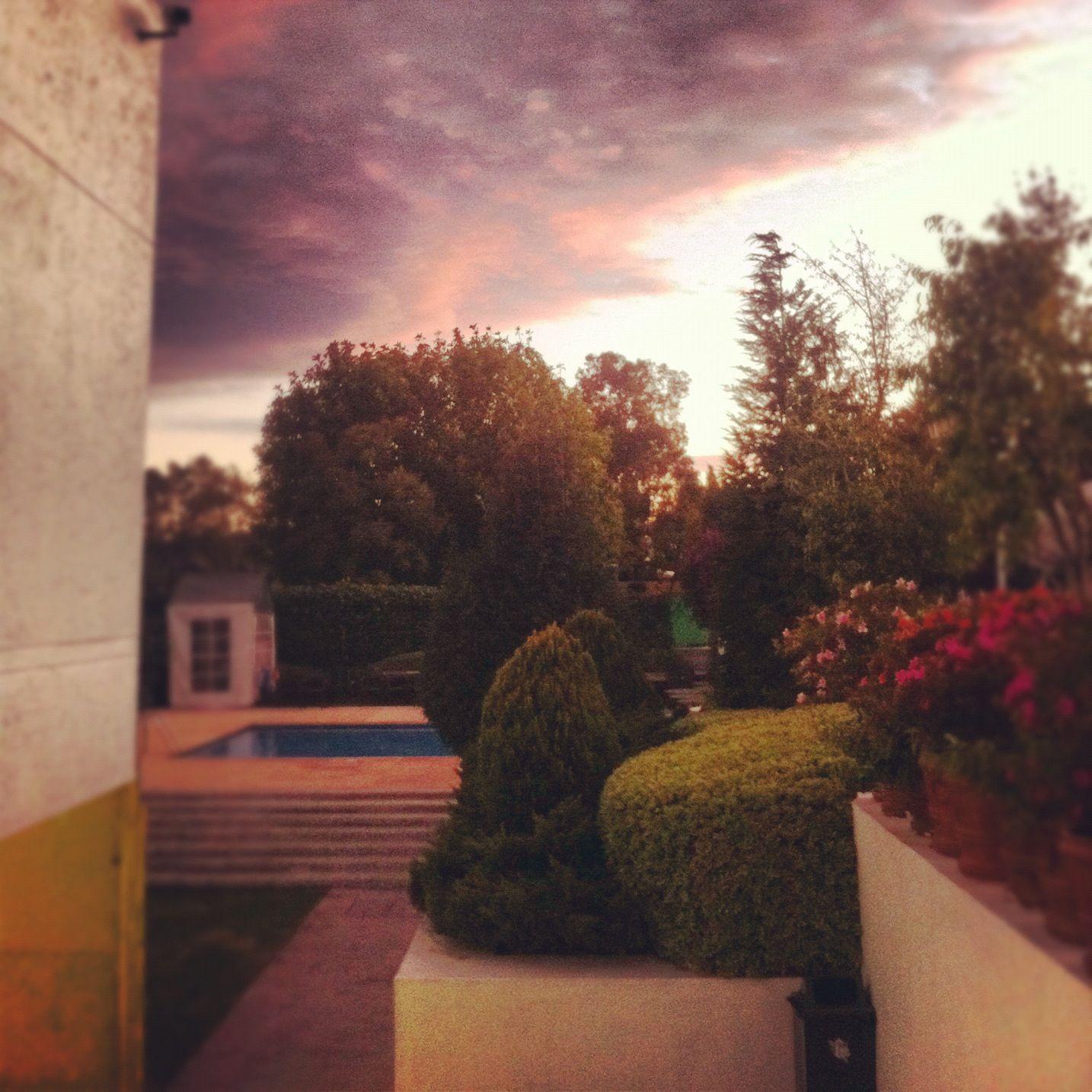 paisaje en el club chapultepec