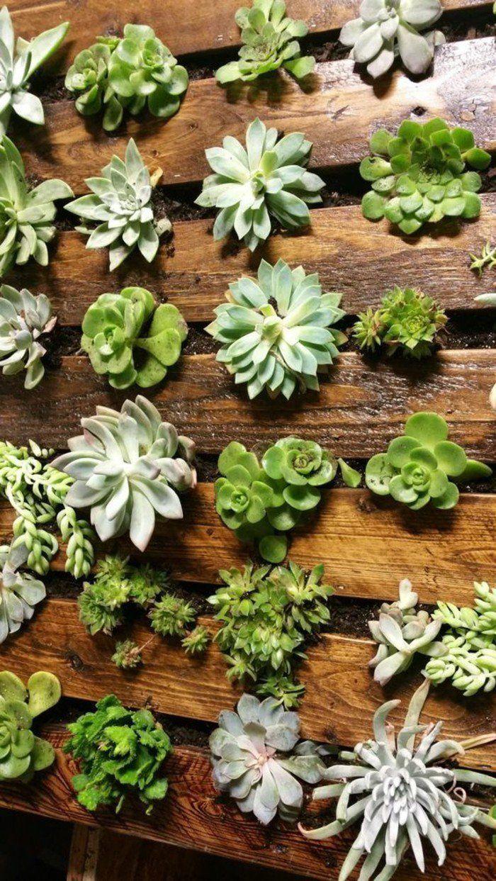 Plante Sur Les Murs le mur végétal en palette - idées originales pour un jardin