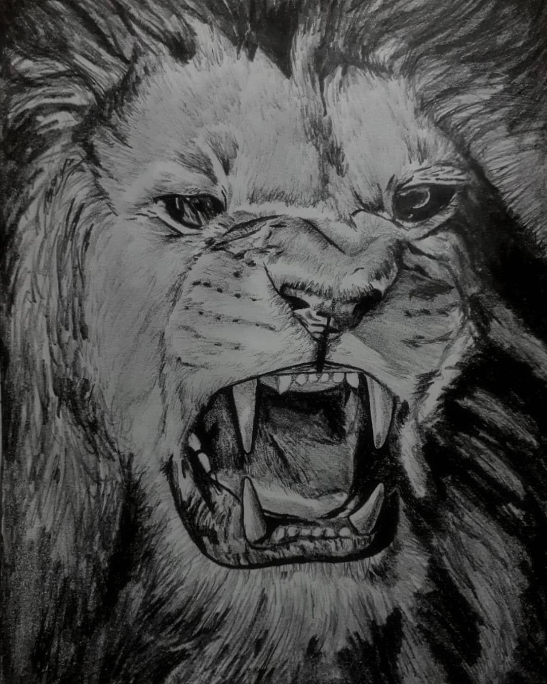 شیر درونت رو پیدا کن Find The Lion Inside You مداد اتود