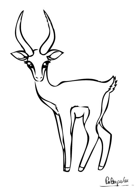 Gazelle coloriage gazelle coloriages gazelles coloriage - Savane dessin ...