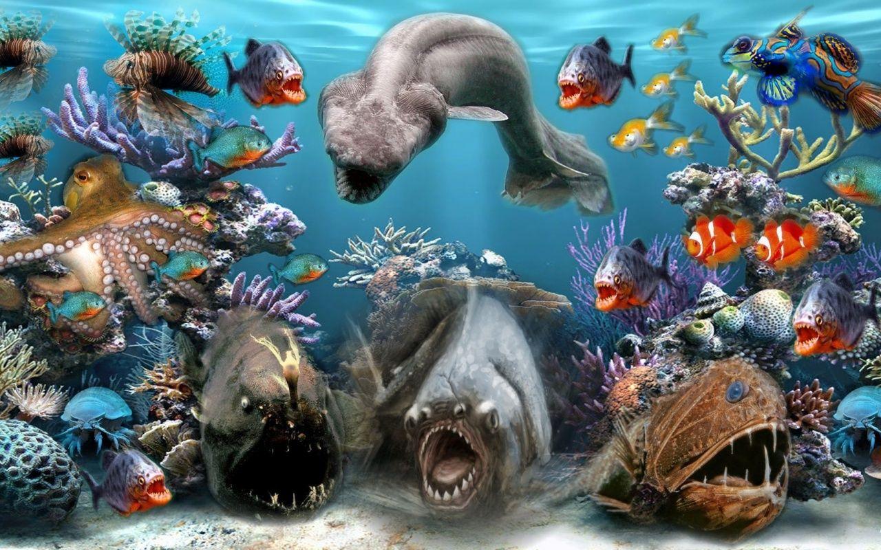 Животные морей и океана картинки