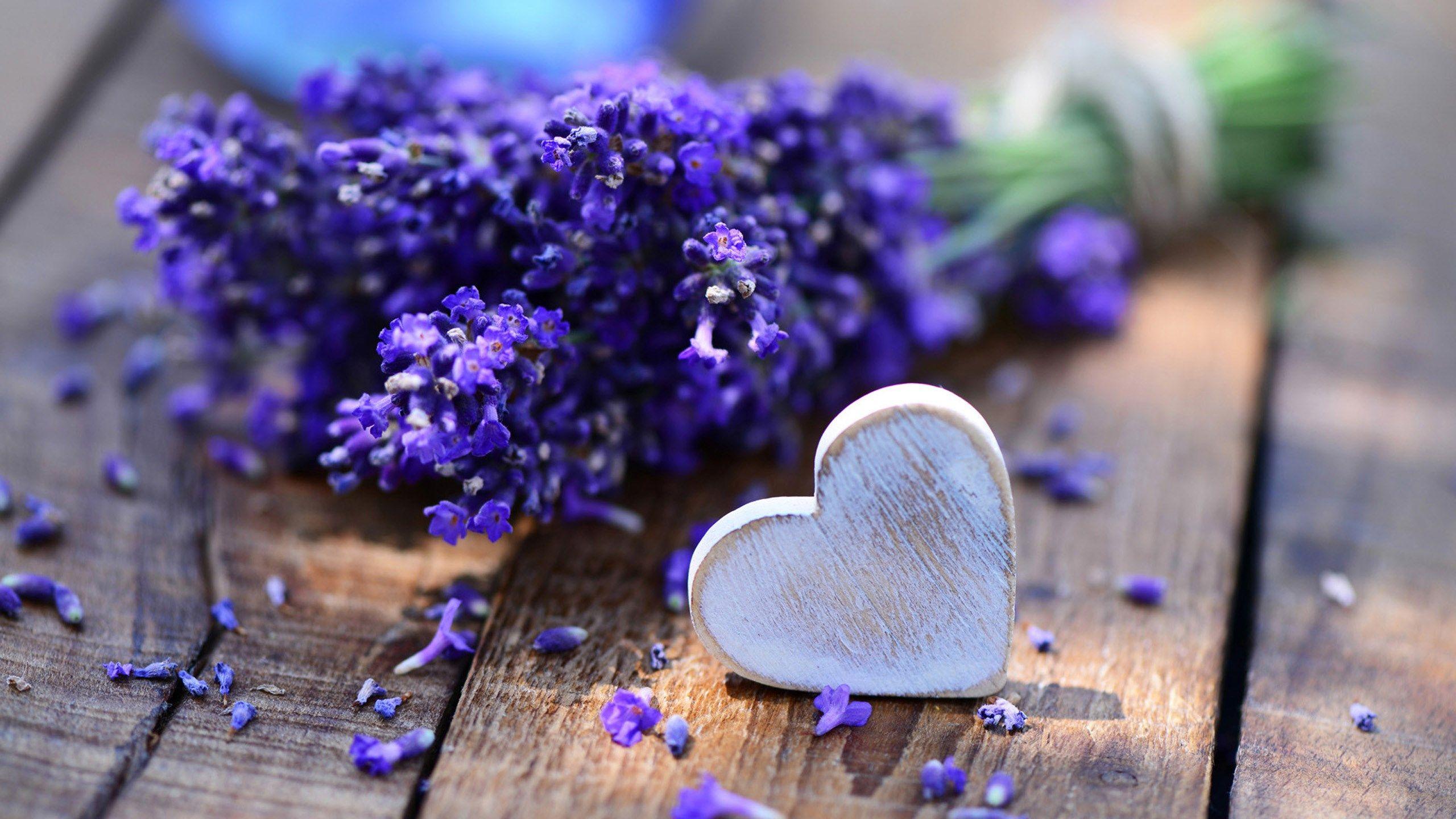 Beautiful Lavender Wallpaper Lavender Heart Lavender Flowers Lavender