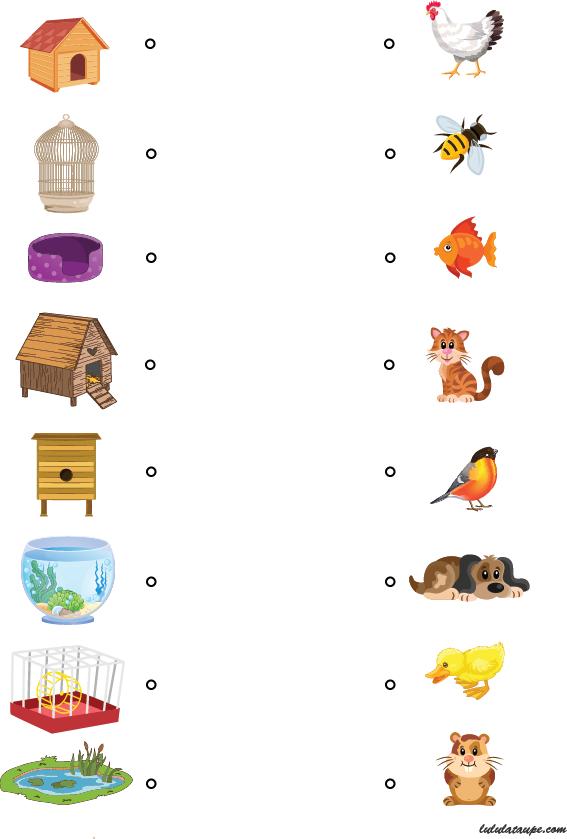 Chacun chez soi jeu ducatif pour enfants de 4 ans et for Activite chez soi