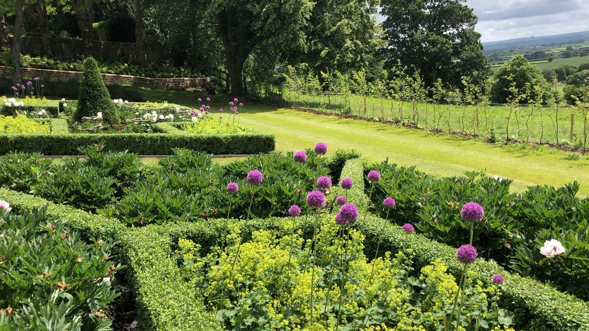 Allium Dance Allium Dance Gartengestaltungbeeteinfassung In 2020 Abschussiger Garten Garten Landschaftsbau Garten Grundriss