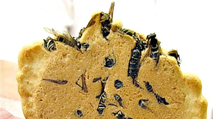 wasp crackers � japanthese crackers can be bought in the