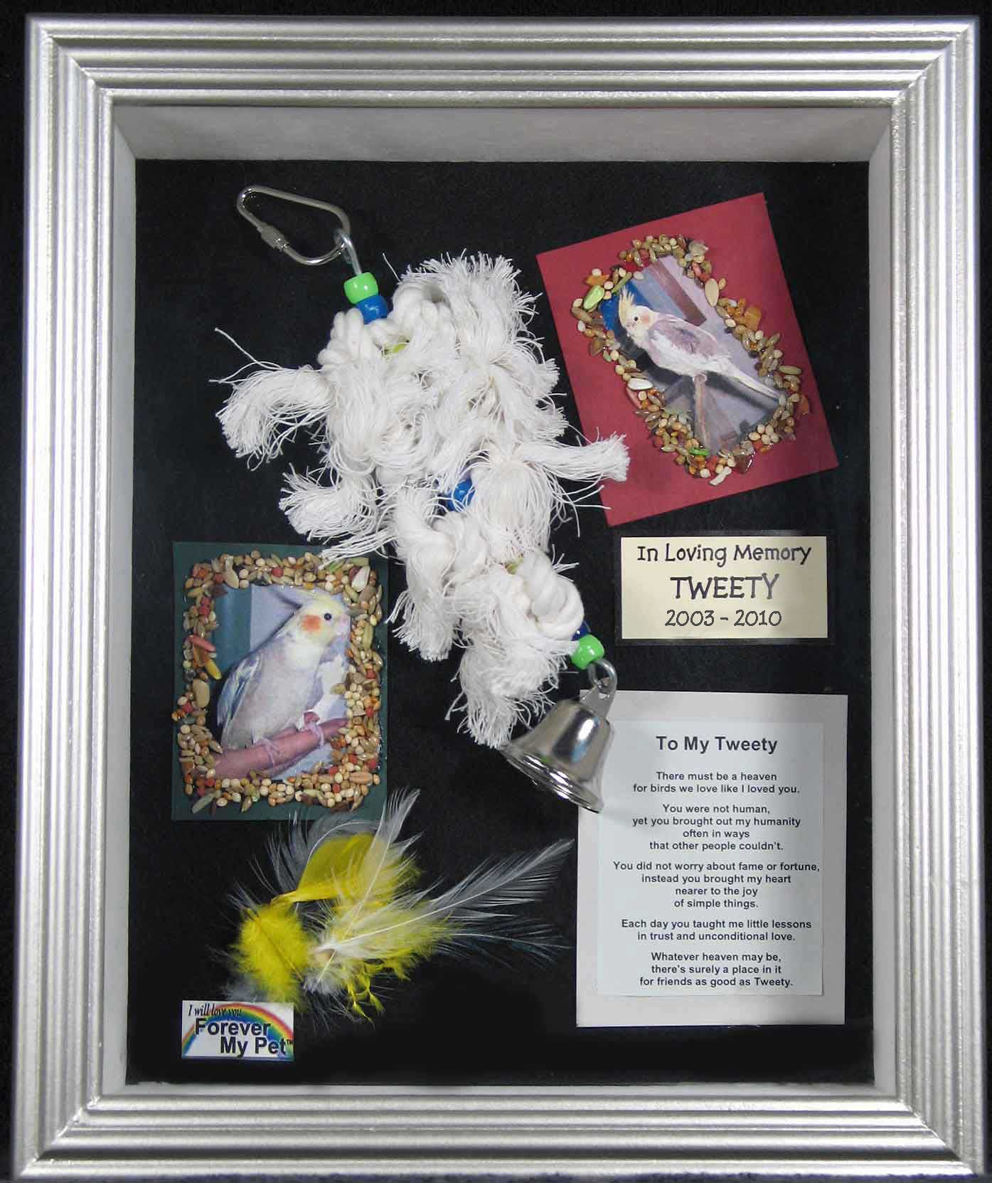 pet frames in loving memory - Google Search | Framing Stuff For Our ...