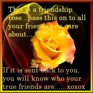 Friendship Quotes Yorkshirerose Photo Dedicated To My Best