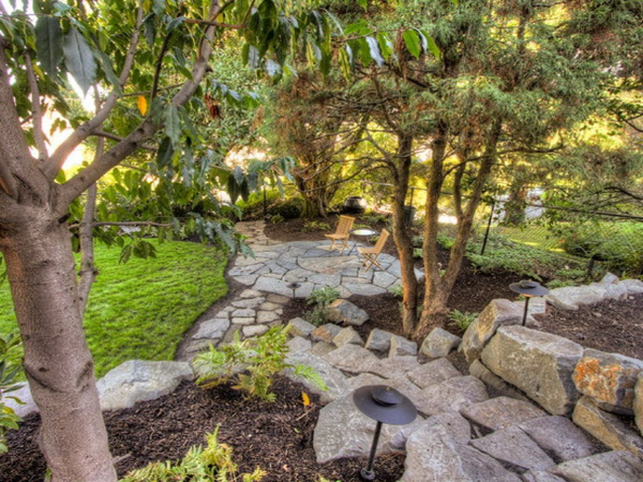 Landscaping Under Pine Trees and Deer | Landscaping with ...