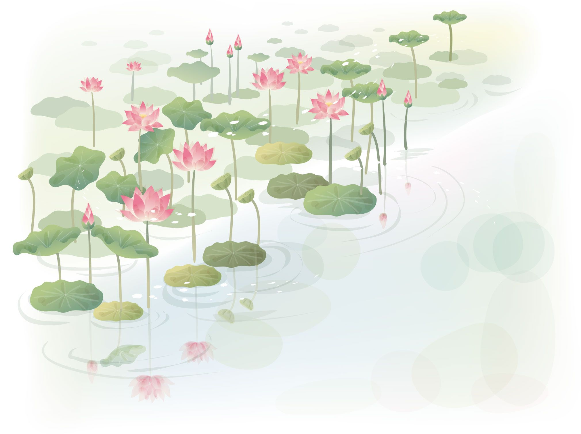 Image Sample Lotus Pond Watercolor Painting Style イラスト 水彩 睡蓮