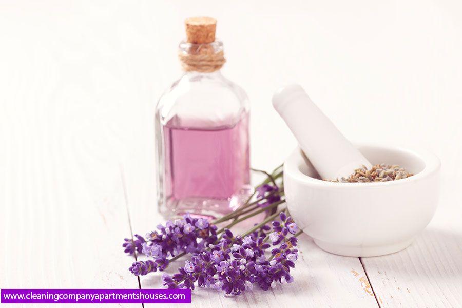 عشبة الخزامى وكيفية استخدام فوائد اعشاب زيت اللافندر للشعر للبشرة Calming Essential Oils Aromatherapy Gifts Healthy Skin Remedies
