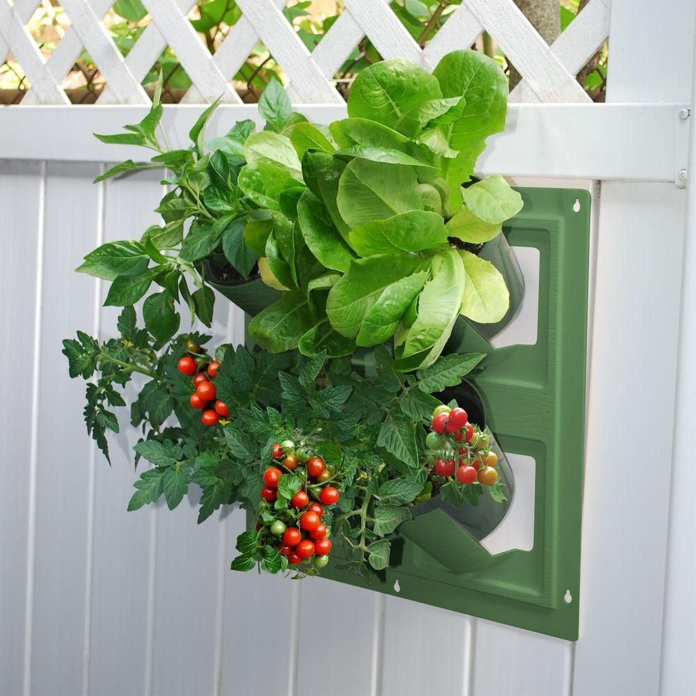 Emsco WallFlowers 17 In. Square Resin Living Wall Hanging