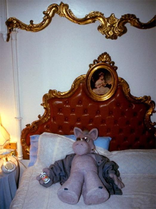 Cerebus the Aardvark after a night out on the town.