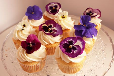 Pansies Are One Of The Tastiest And Prettiest Edible Flowers It Is Reccomended You Buy Organically Grown Fr Edible Flowers Cake Flower Cupcakes Edible Flowers