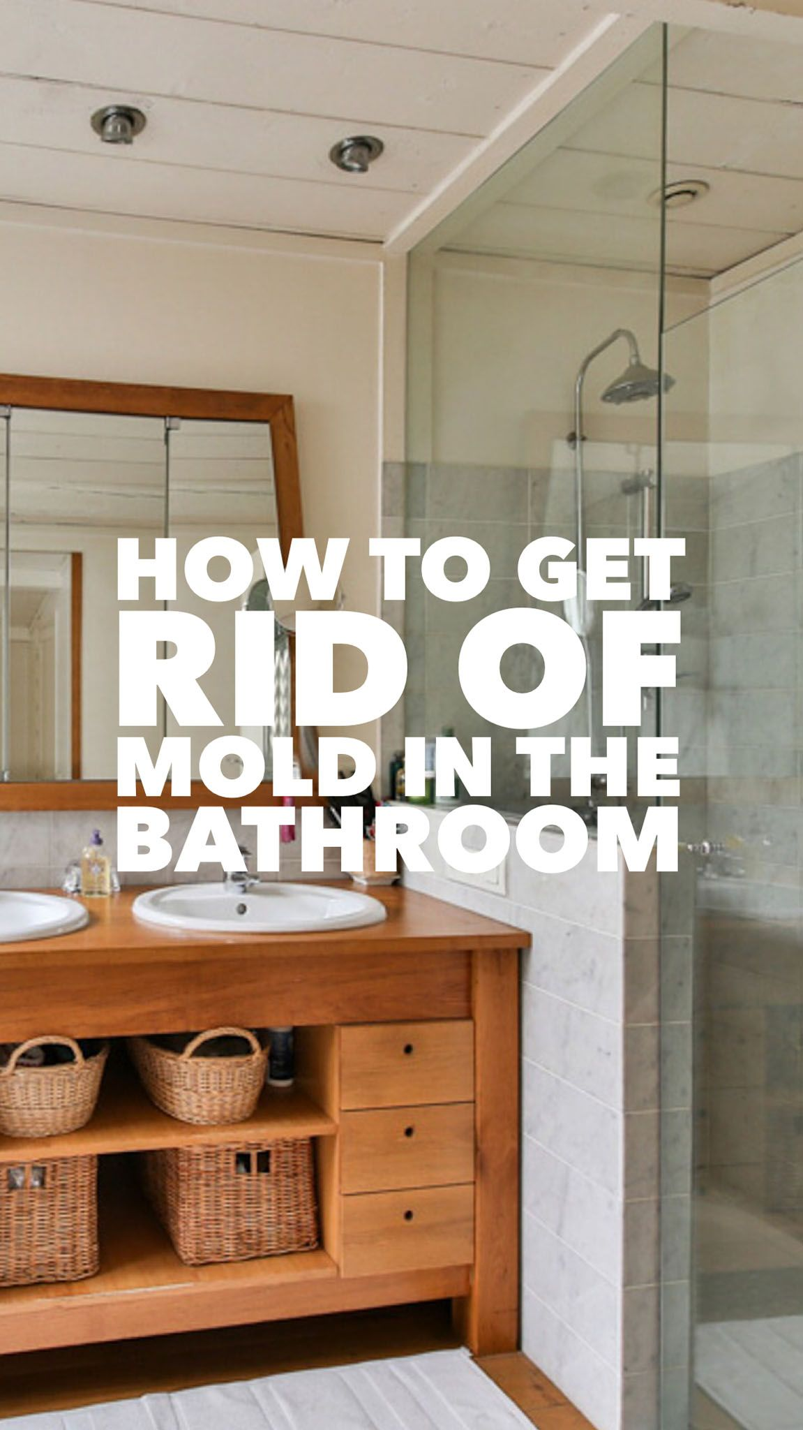 How To Remove Mold From Clothes | Mold in bathroom, Get ...