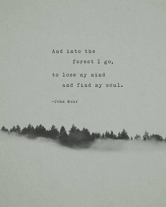 John Muir quote print, and into the forest I go, m