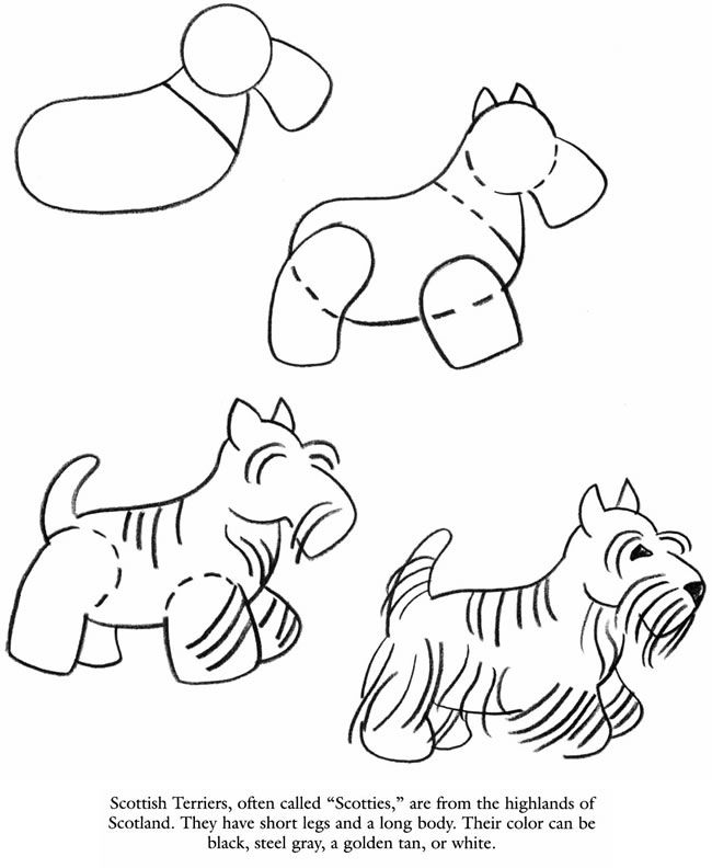 How To Draw A Scottie Dog Kresleni Navod Pinterest Drawings