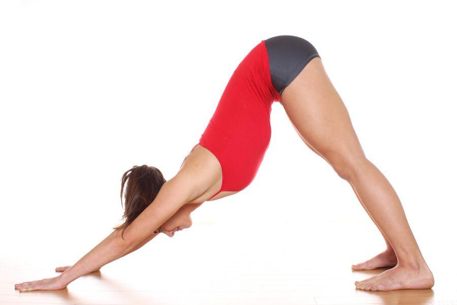Downward Facing Dog Pose   Yoga poses, Yoga pictures, Yoga ...