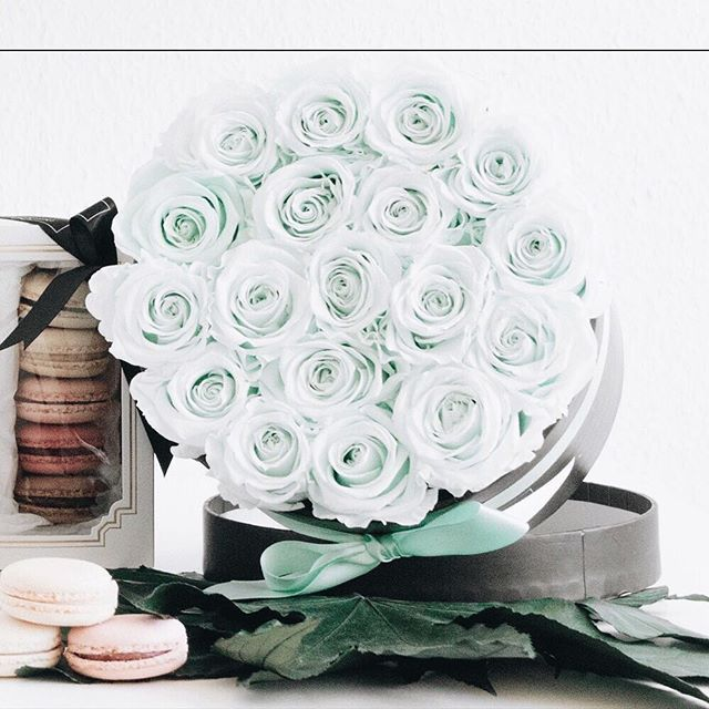 blooms for eternity minty green infinity rosen die nicht. Black Bedroom Furniture Sets. Home Design Ideas