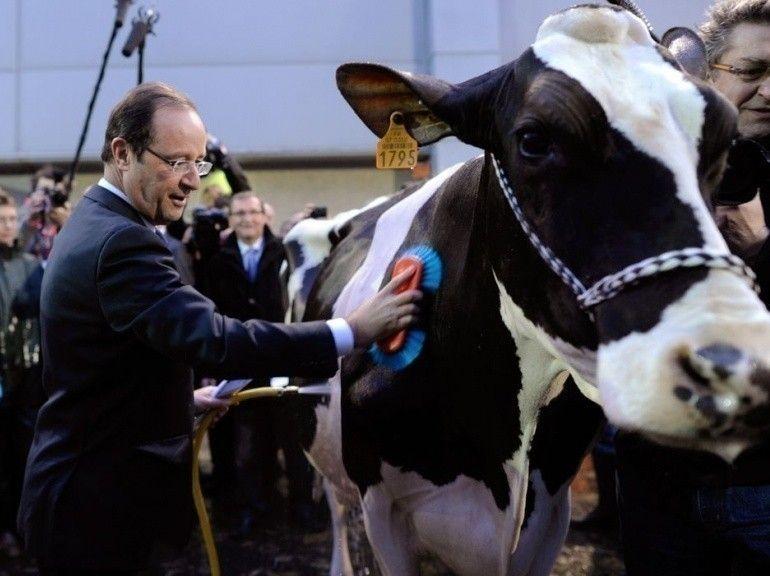 François Hollande au salon de l'Agriculture   Alimentation Générale   AG