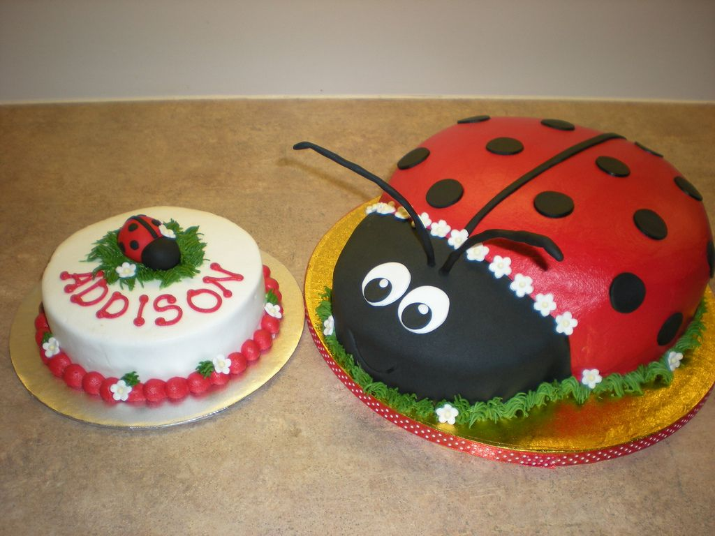 Lady Bug Cake With A Smash