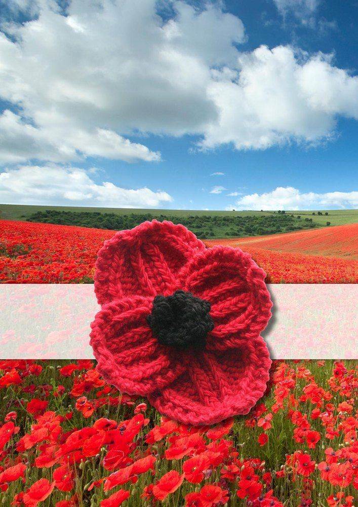 Remembrance Day Poppy Knitting pattern by Rosee Woodland ...