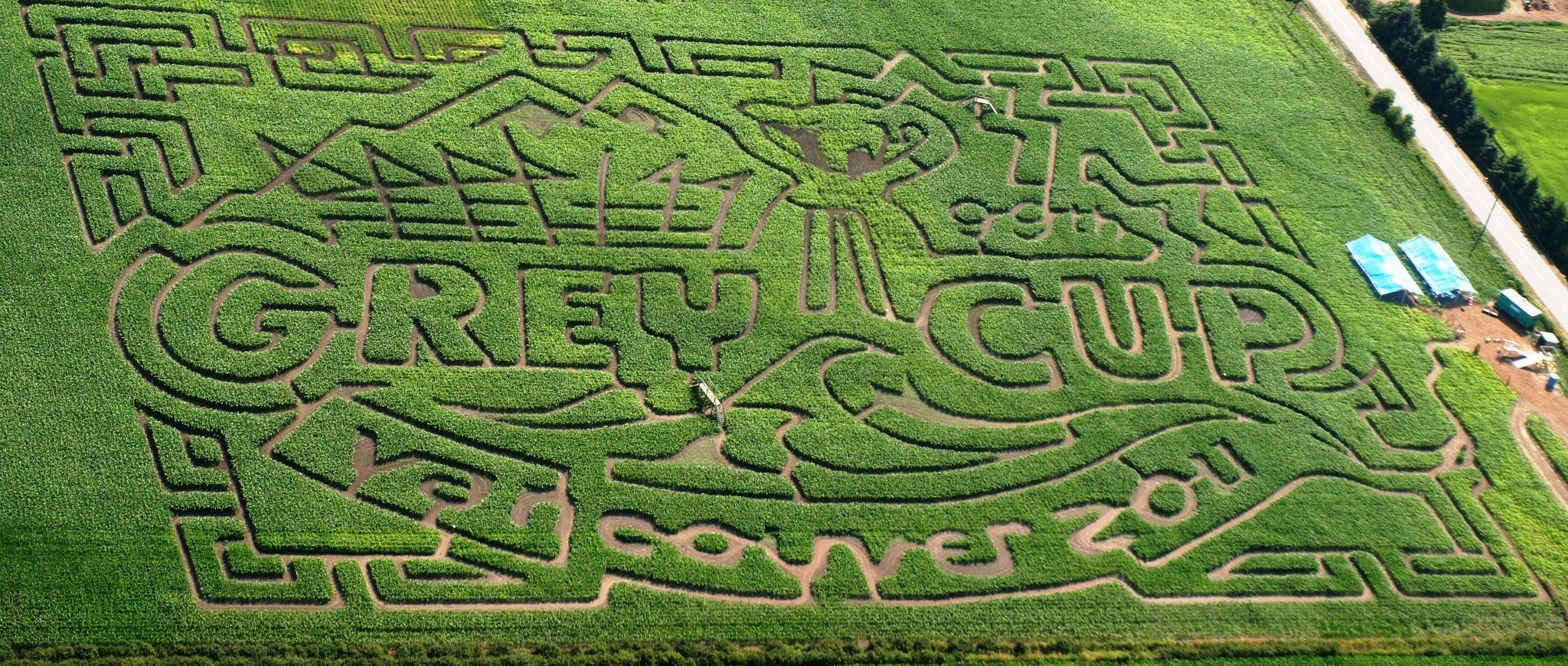 Be Amazed by the Bose Family Corn Maze in #SurreyBC >> http://45in45.tourismsurrey.com/be-amazed-by-the-bose-family-corn-maze/