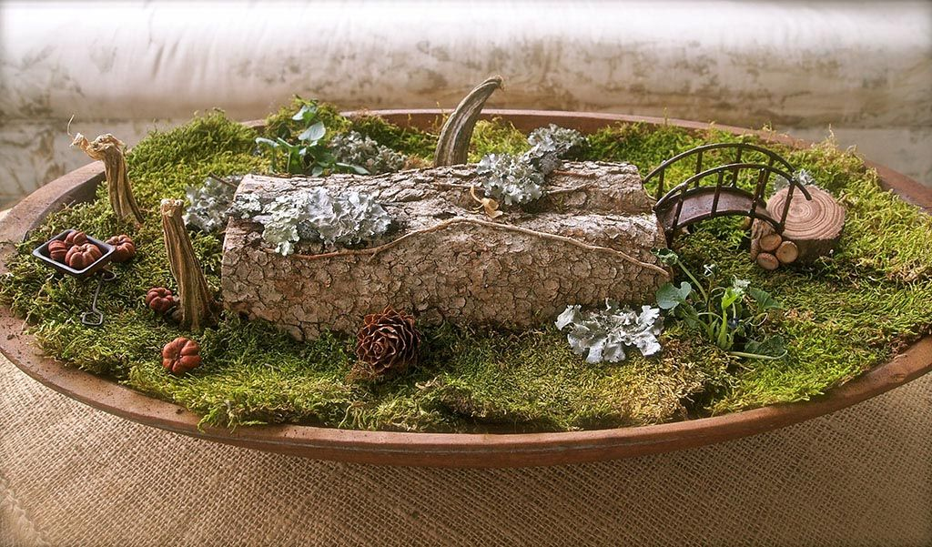Large Fairy Garden Containers Pinterest