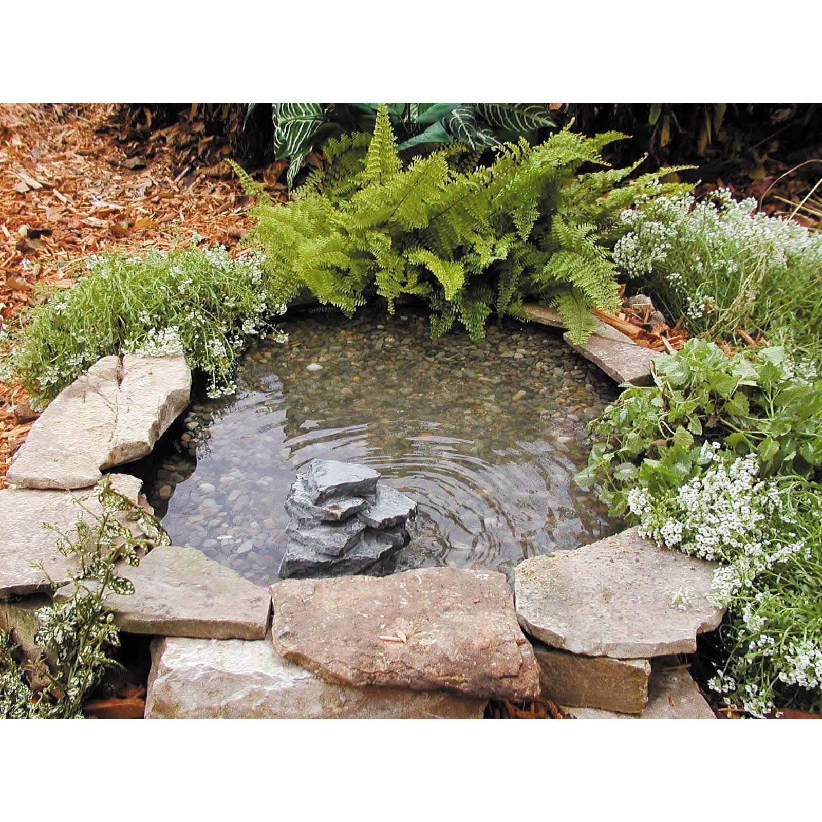 Small pond gardening and yard pinterest for Small fish pond