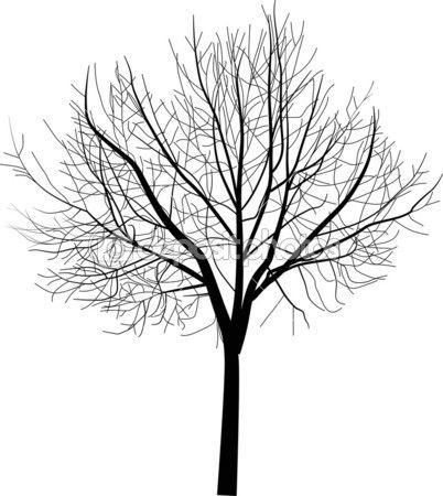 Isolated Bare Tree Illustration Tree Illustration Bare Tree Tree Drawing