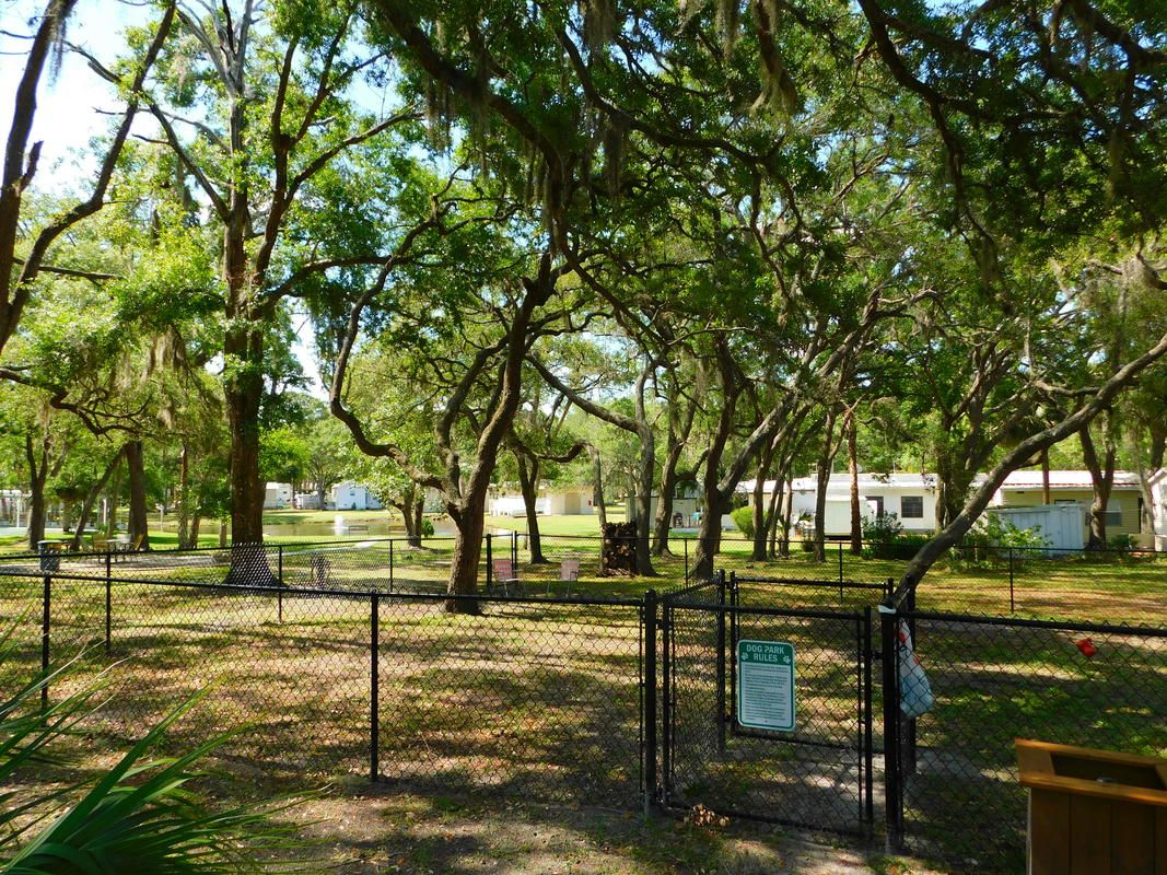 Take Your Dog For Some Exercise In Our Shaded Dog Park Resort Famous Beaches Rv Parks