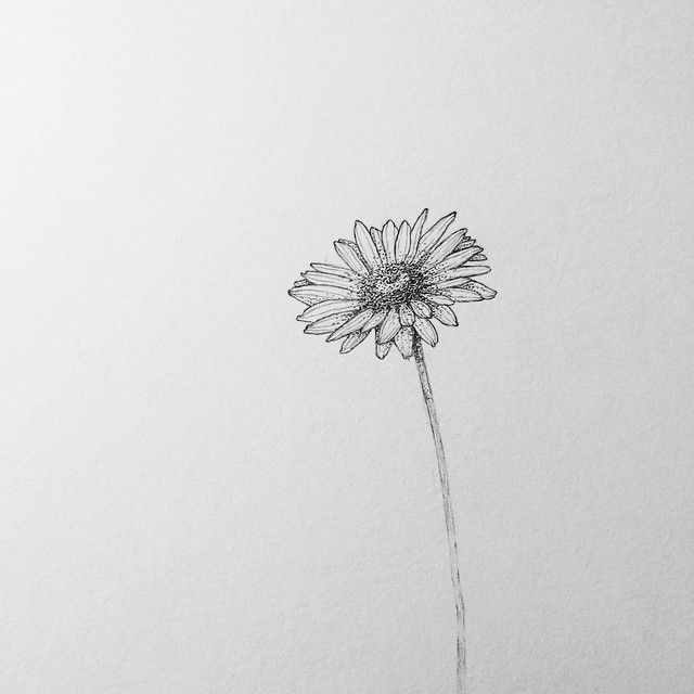 Pin By Lisa Moore On Drawing In 2020 Small Daisy Tattoo Daisy Flower Tattoos Sunflower Tattoos