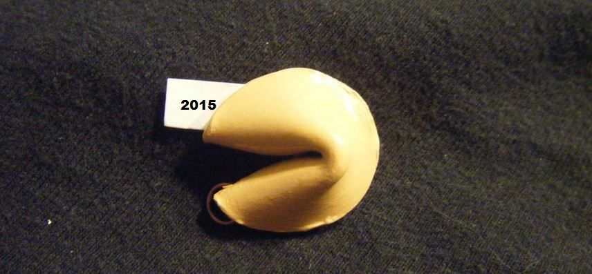 1-2015-Prections-21WIRE