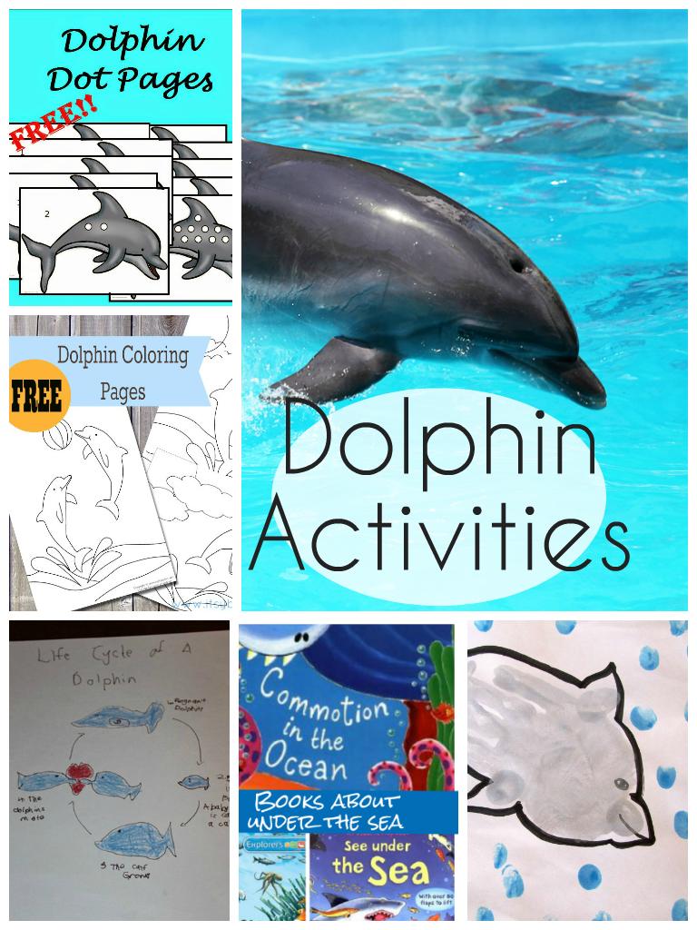 dolphin activities for kids activities books and ocean