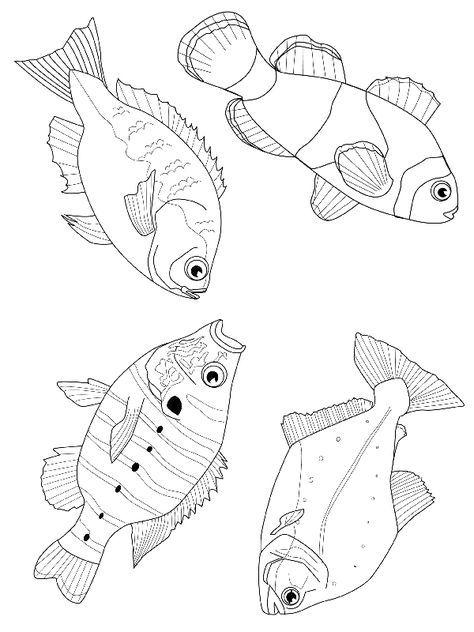 fisch malvorlagen | malvorlagen tiere, meerestiere