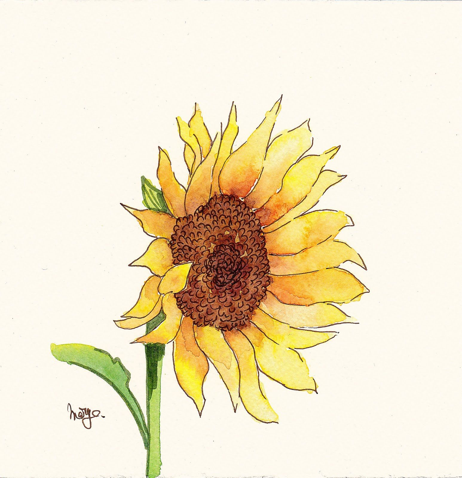 Floral Sketches Sunflower Art Sunflower Painting Sunflower Drawing