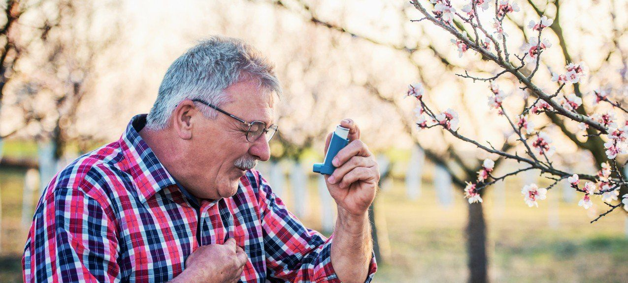 Hay fever causes symptoms and complications gohealth