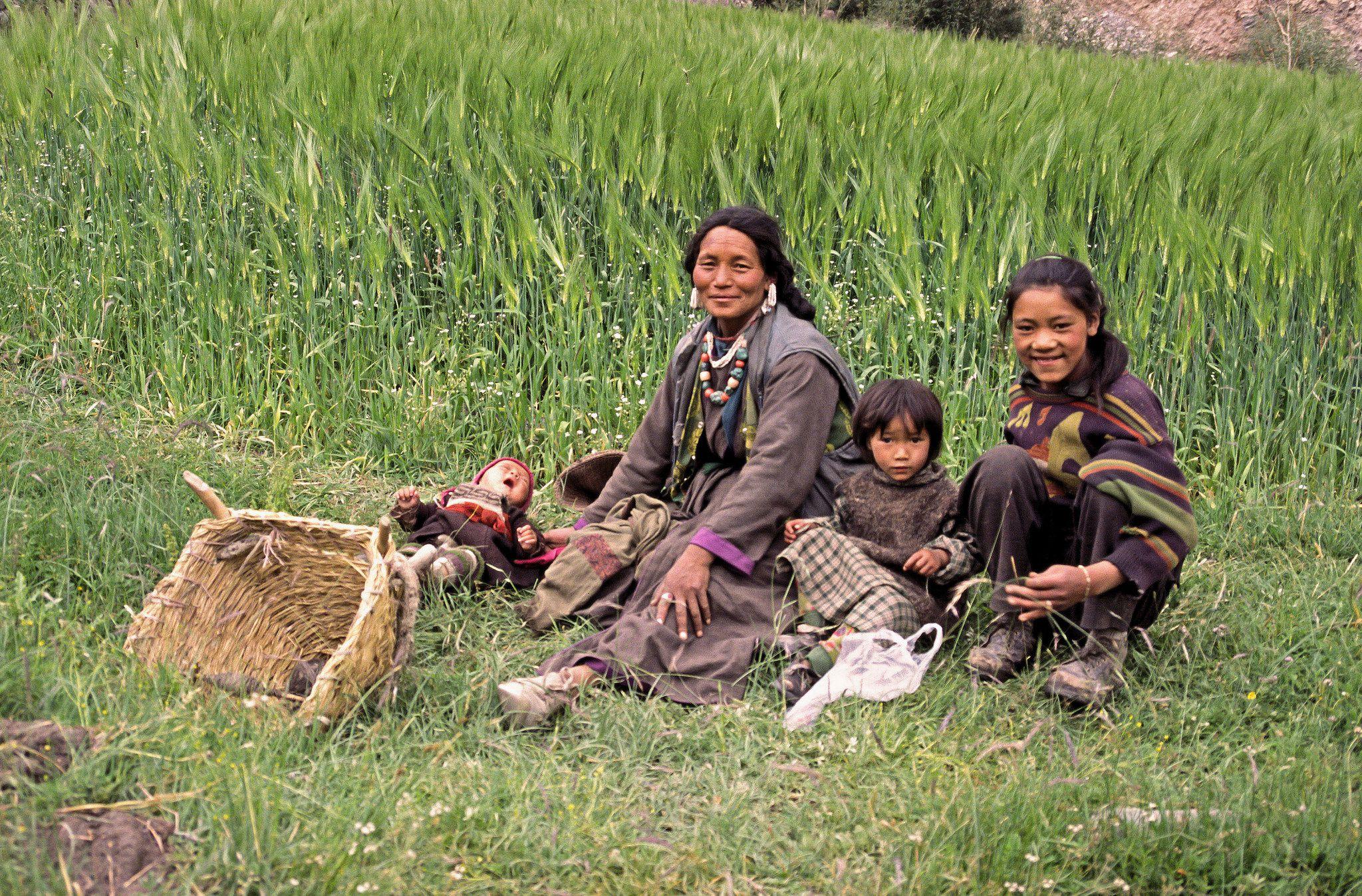 https://flic.kr/p/CgxNyU |  Ladakh -Famille au champ