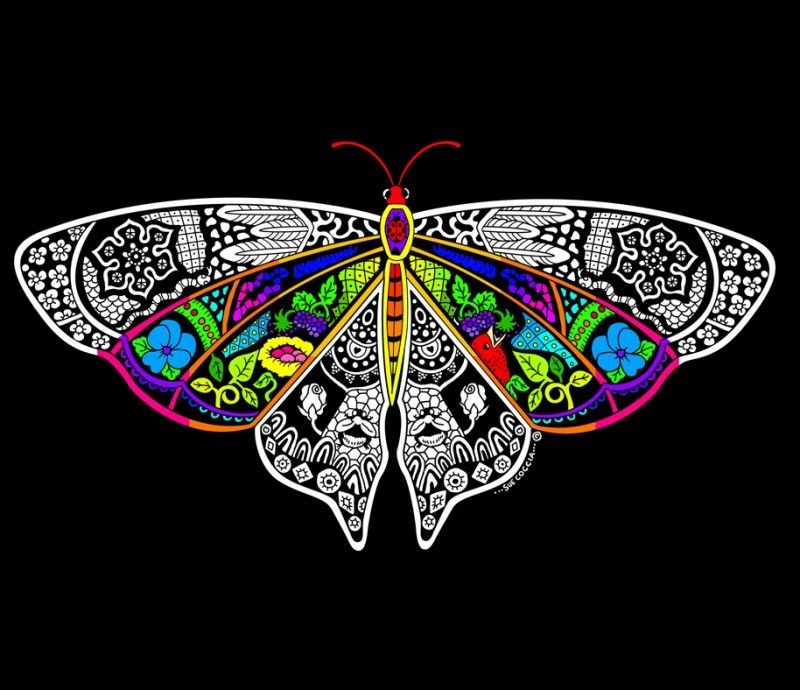 Butterfly - 16x20 Fuzzy Velvet Coloring Poster Inner Nature ...
