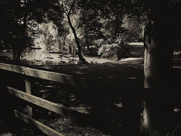Landscape photography artistblack and white landscape shot on iphone monotone monochromatic