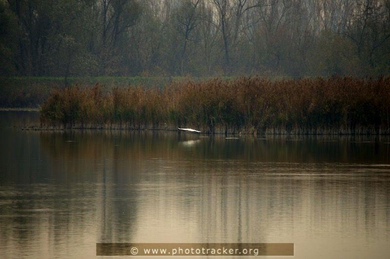 Valli di Argenta - Photo Tour, slow bike in natura.