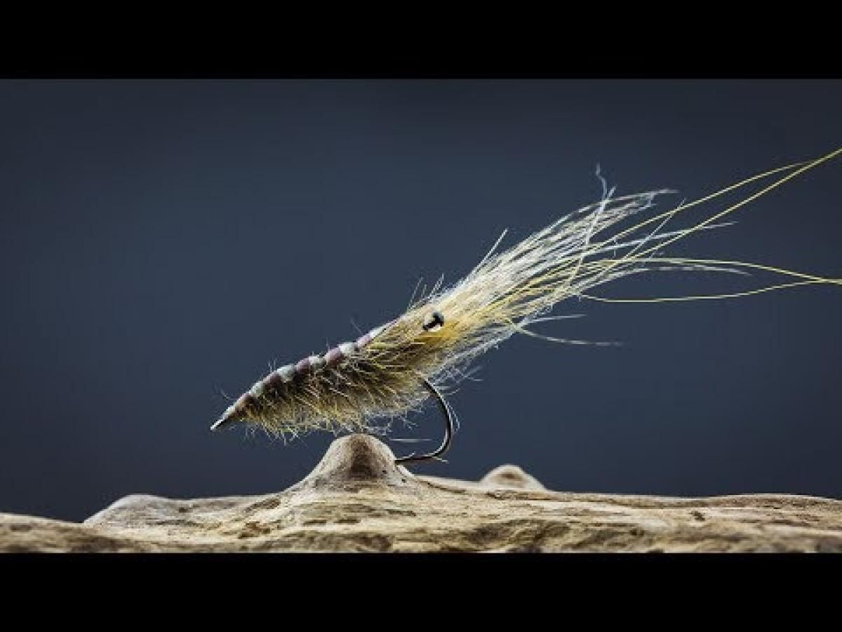 Image result for The Partridge sea trout fly (With images