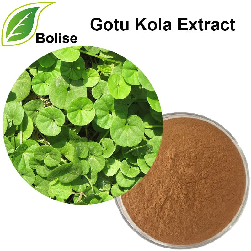 Centella Asiatica, also known as Brahmi, has been used as