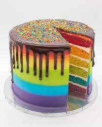 Photo of rainbow cake – Google Search