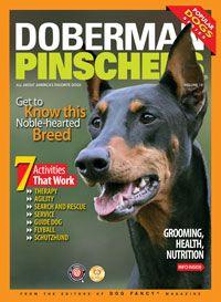 The book of the doberman pinscher
