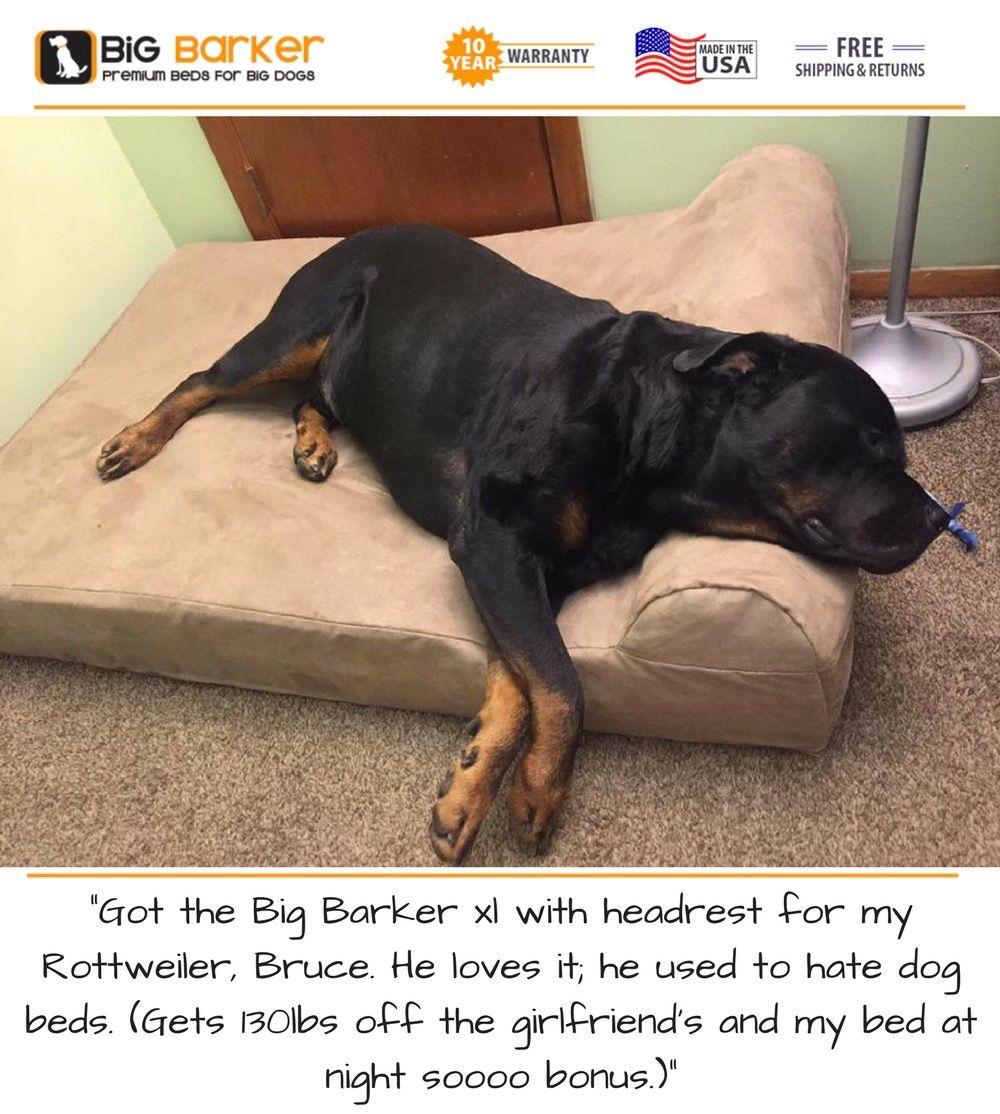 Orthopedic Dog Beds for Large & Extra Large Dogs Big dog