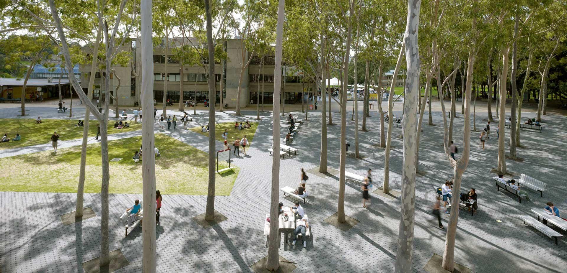 macquarie university courtyard hassell