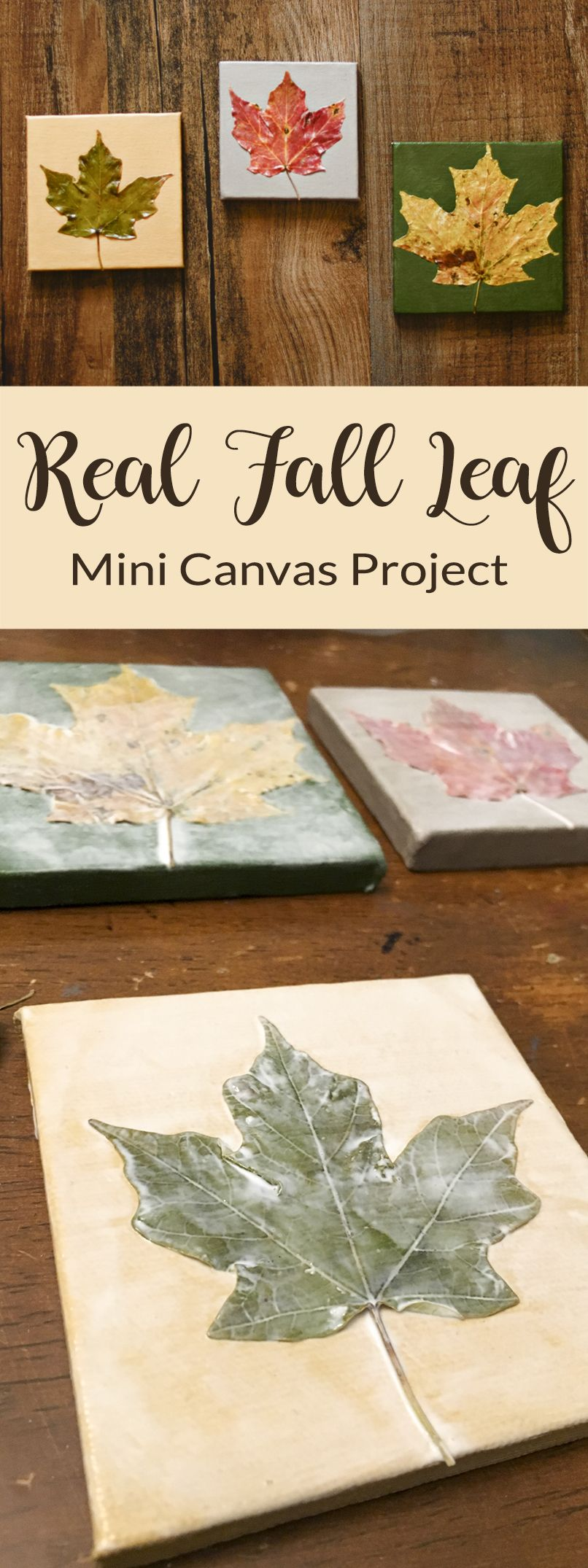 Real Fall Leaf Mini Canvases Preserve Fall Leaves in Cute little works of art! #leafcrafts